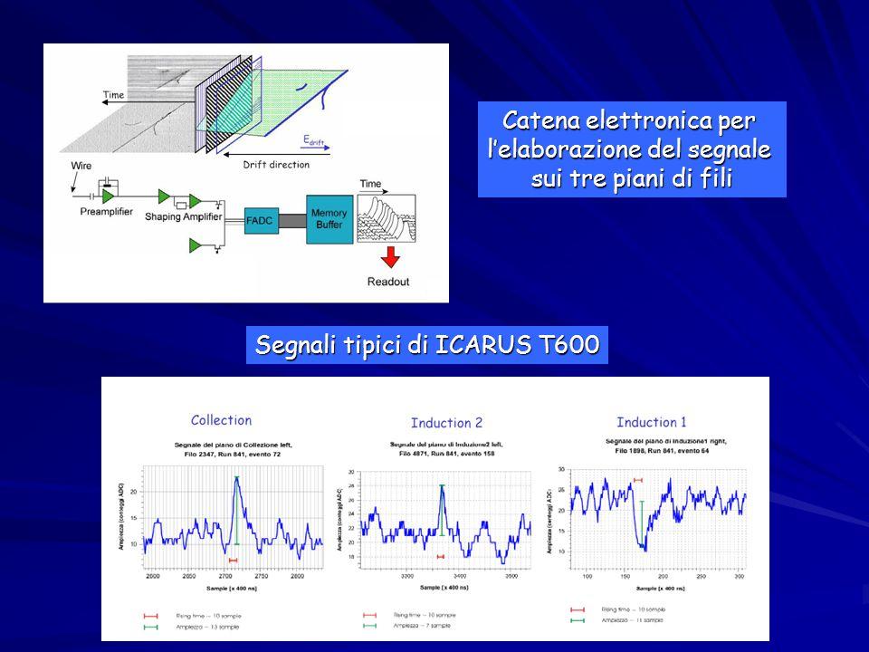 Catena elettronica per l'elaborazione del segnale sui tre piani di fili Segnali tipici di ICARUS T600