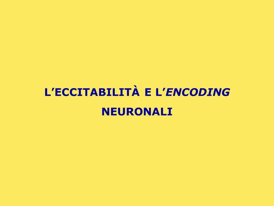 GENESI DEL POTENZIALE D'AZIONE NEURONALE