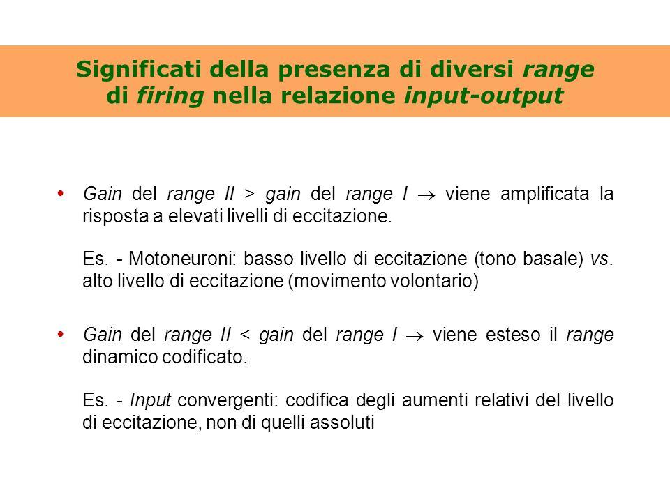 Significati della presenza di diversi range di firing nella relazione input-output Gain del range II > gain del range I  viene amplificata la rispost