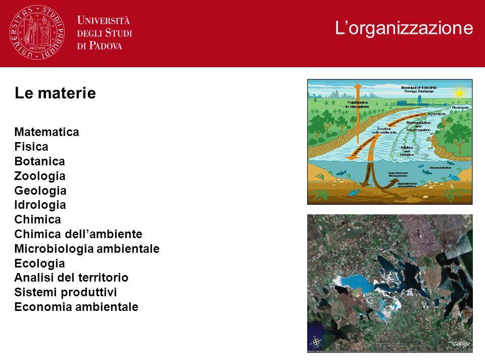 L'organizzazione Matematica Fisica Botanica Zoologia Geologia Idrologia Chimica Chimica dell'ambiente Microbiologia ambientale Ecologia Analisi del territorio Sistemi produttivi Economia ambientale Le materie
