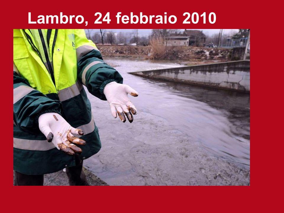 Lambro, 24 febbraio 2010