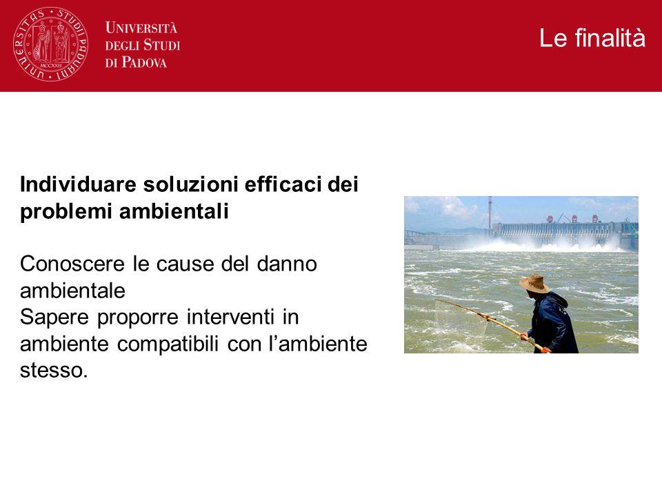 Le finalità Individuare soluzioni efficaci dei problemi ambientali Conoscere le cause del danno ambientale Sapere proporre interventi in ambiente compatibili con l'ambiente stesso.