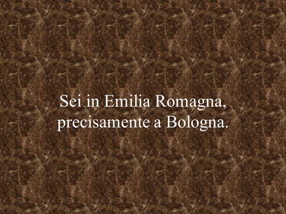 Sei in Emilia Romagna, precisamente a Bologna.
