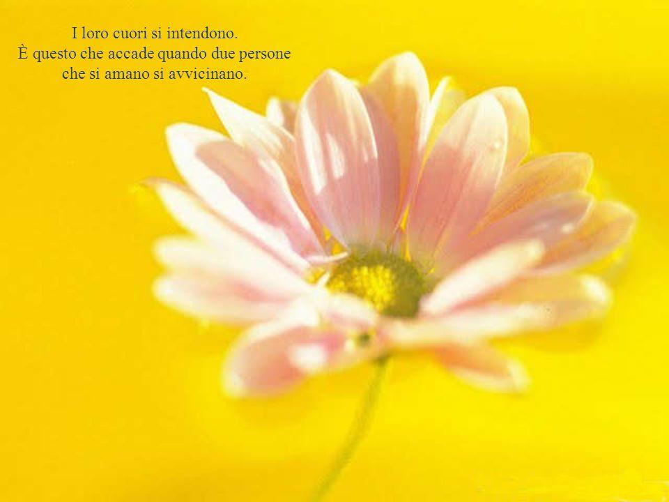 E quando l'amore è più intenso non è necessario nemmeno sussurrare, basta guardarsi.