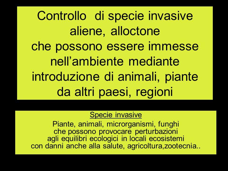 Controllo di specie invasive aliene, alloctone che possono essere immesse nell'ambiente mediante introduzione di animali, piante da altri paesi, regio