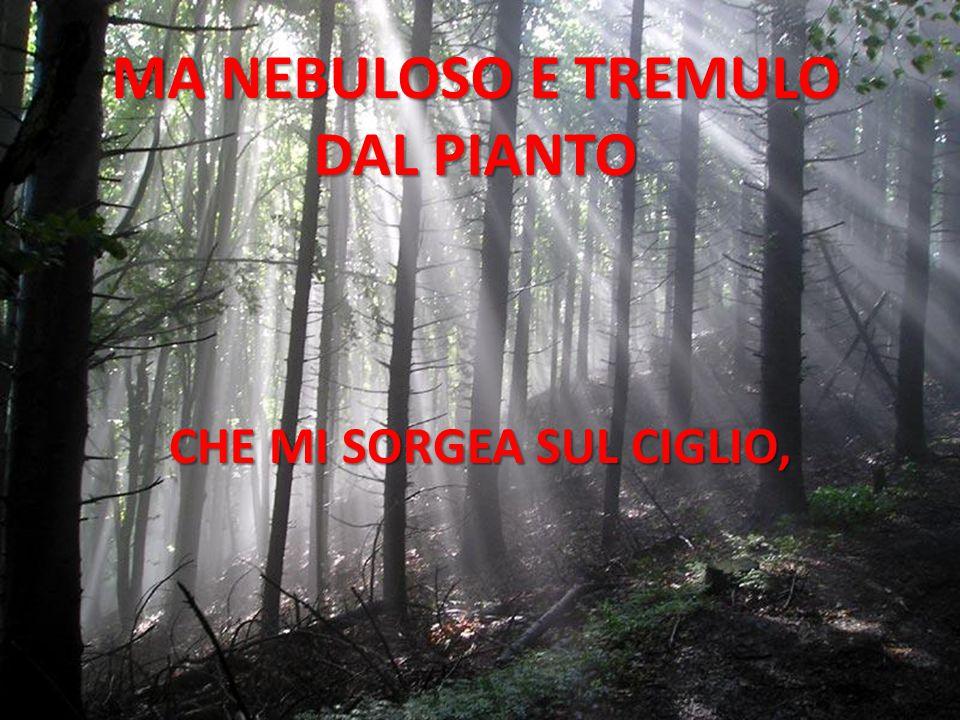 MA NEBULOSO E TREMULO DAL PIANTO CHE MI SORGEA SUL CIGLIO,
