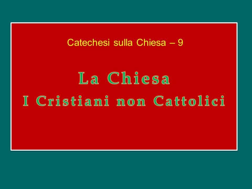 Credo in Spíritum Sanctum, Dominum et vivificántem, qui ex Patre Filióque procédit, qui cum Patre et Fílio simul adorátur et conglorificátur, qui locú