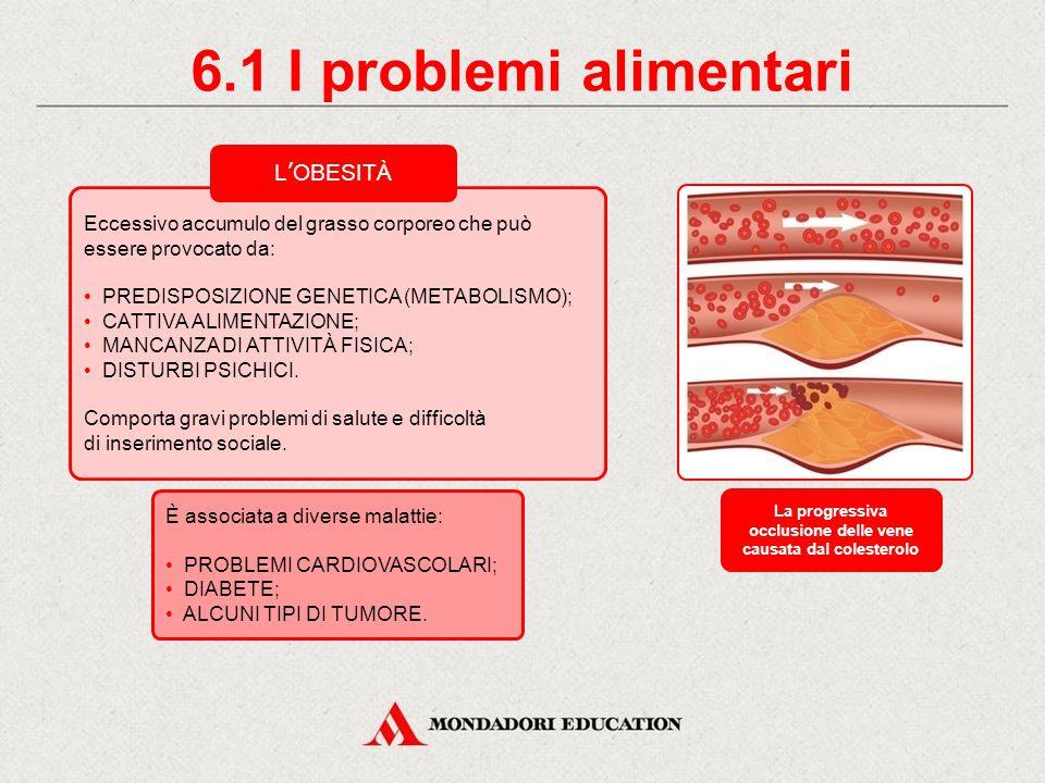 diabete; malattie cardiovascolari; problemi gastroenterici; allergie e intolleranze. 6. I problemi alimentari INSORGERE DI MALATTIE DIETA SBAGLIATA Al