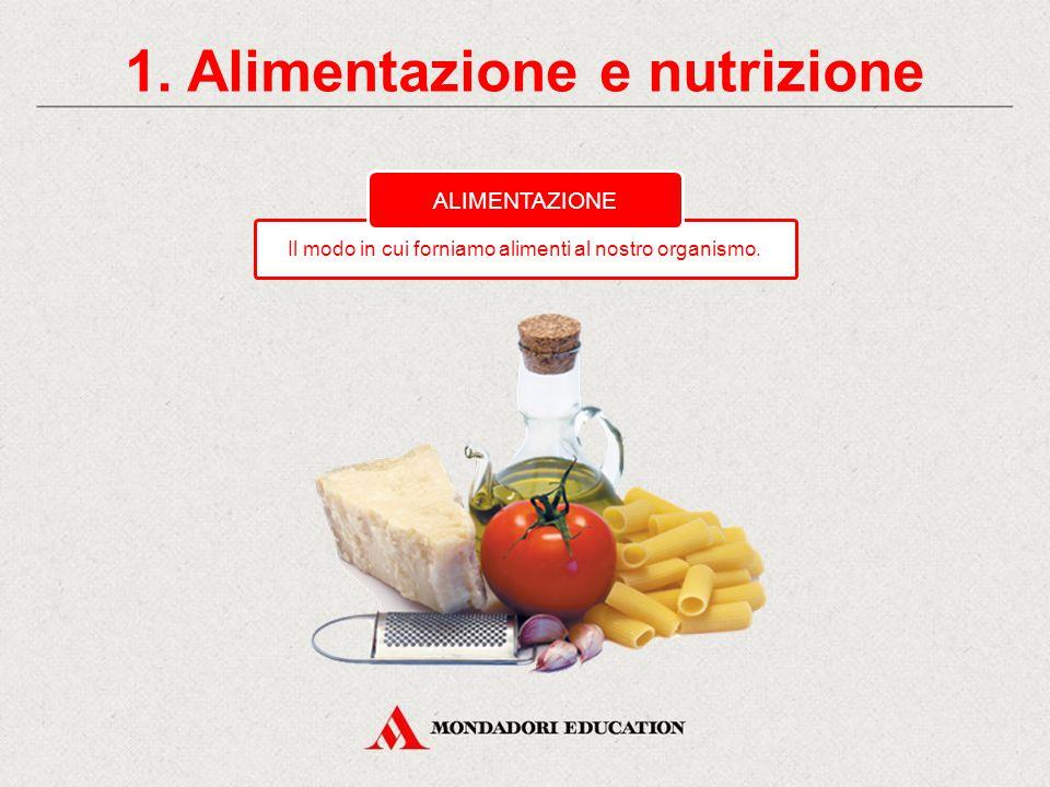 Una corretta alimentazione CONTENUTI 1. Alimentazione e nutrizione Che cosa mangiavano i nostri nonni? 3. Com'è cambiato il modo di alimentarsi 2. L'a