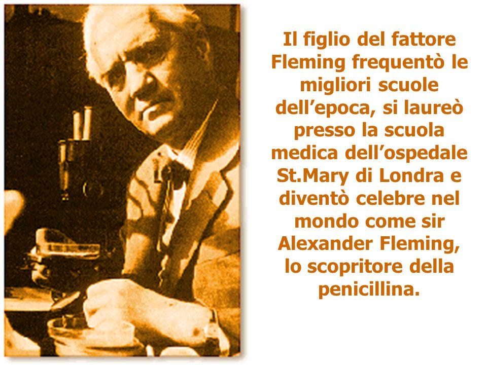 Il figlio del fattore Fleming frequentò le migliori scuole dell'epoca, si laureò presso la scuola medica dell'ospedale St.Mary di Londra e diventò cel