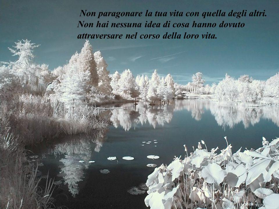 Non paragonare la tua vita con quella degli altri.