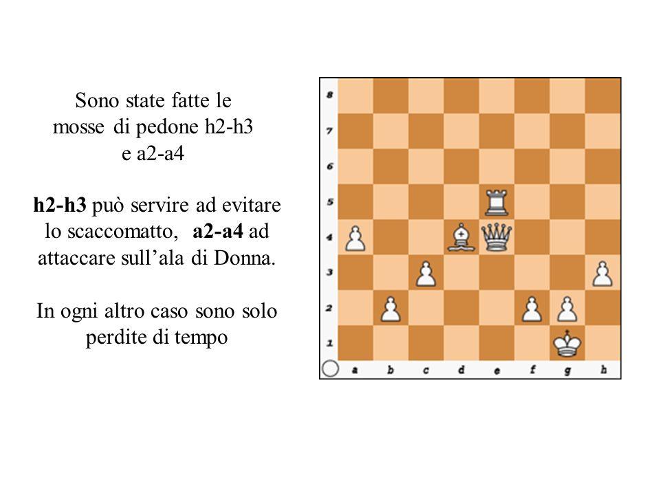 Sono state fatte le mosse di pedone h2-h3 e a2-a4 h2-h3 può servire ad evitare lo scaccomatto, a2-a4 ad attaccare sull'ala di Donna.