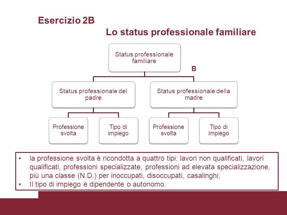 Esercizio 2B Lo status professionale familiare Status professionale familiare Status professionale del padre Professione svolta Tipo di impiego Status