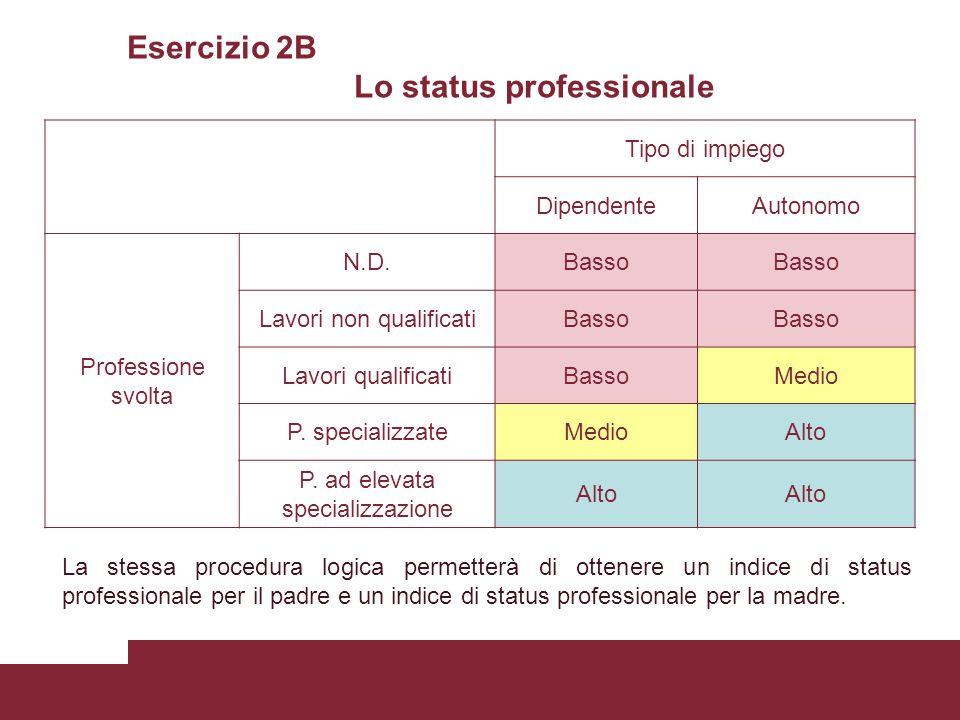 Esercizio 2B Lo status professionale Tipo di impiego DipendenteAutonomo Professione svolta N.D.Basso Lavori non qualificatiBasso Lavori qualificatiBassoMedio P.
