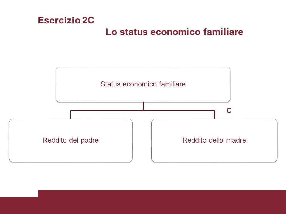 Esercizio 2C Lo status economico familiare Status economico familiare Reddito del padreReddito della madre C