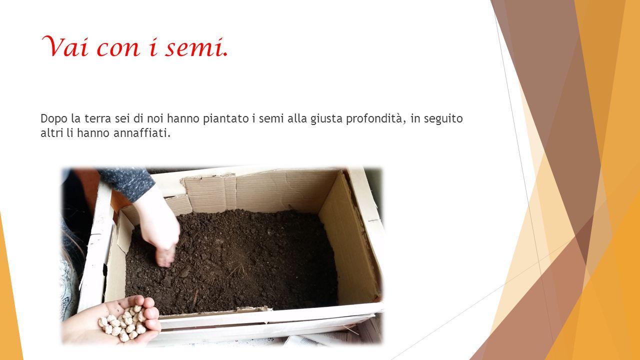 Vai con i semi.
