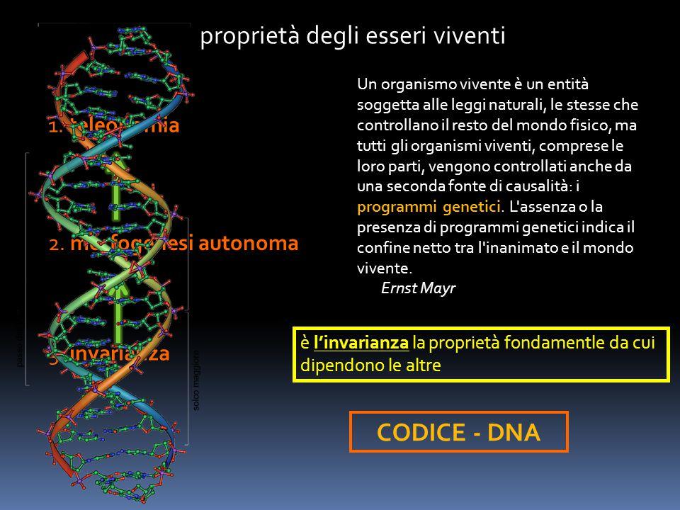 proprietà degli esseri viventi 1. teleonomia 2. morfogenesi autonoma 3. invarianza è l'invarianza la proprietà fondamentle da cui dipendono le altre U