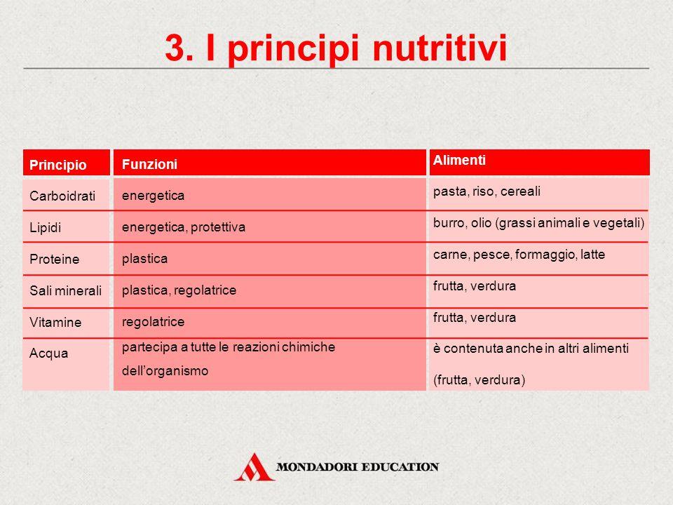 2. Le funzioni degli alimenti PROTEINE GRASSI O LIPIDI CARBOIDRATI O GLUCIDI (zuccheri) VITAMINE SALI MINERALI FUNZIONE ENERGETICA FUNZIONE PLASTICA F