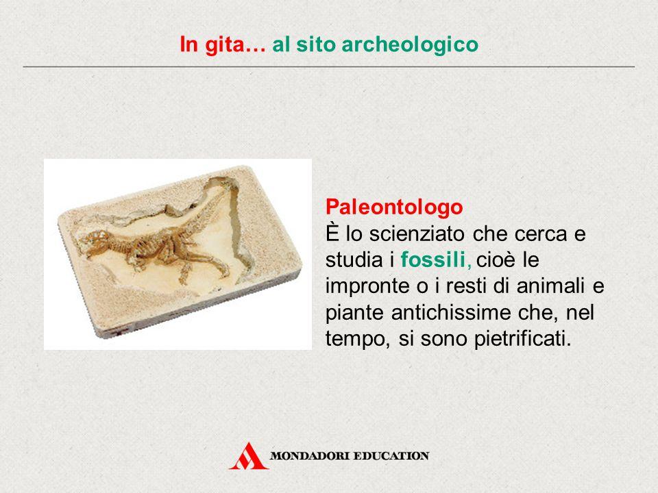 In gita… al sito archeologico Paleontologo È lo scienziato che cerca e studia i fossili, cioè le impronte o i resti di animali e piante antichissime che, nel tempo, si sono pietrificati.