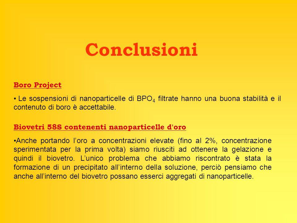 Conclusioni Boro Project Le sospensioni di nanoparticelle di BPO 4 filtrate hanno una buona stabilità e il contenuto di boro è accettabile. Biovetri 5
