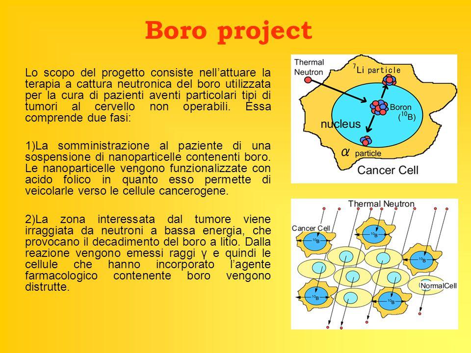 Boro project Lo scopo del progetto consiste nell'attuare la terapia a cattura neutronica del boro utilizzata per la cura di pazienti aventi particolari tipi di tumori al cervello non operabili.