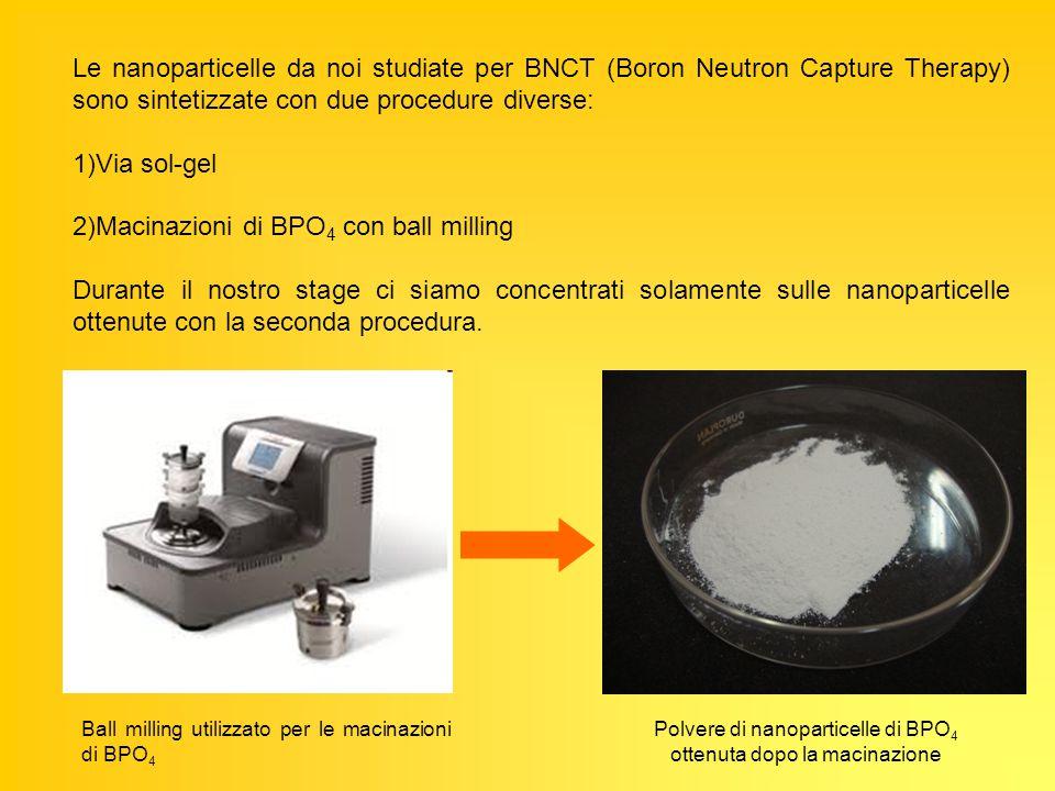Sospensione di nanoparticelle di BPO 4 25 mg di nanoparticelle di BPO 4 50 ml di H 2 O + Ultrasuoni per 30 min filtrazione + 500 μl di polisorbato 80 Ultrasuoni per 20/30 min Portare a pH=7.4 con NaOH Ottenute attraverso successivi step di macinazione con ball milling Filtro con pori da 800 nm Tensioattivo utilizzato per favorire la sospensione delle nanoparticelle nel solvente