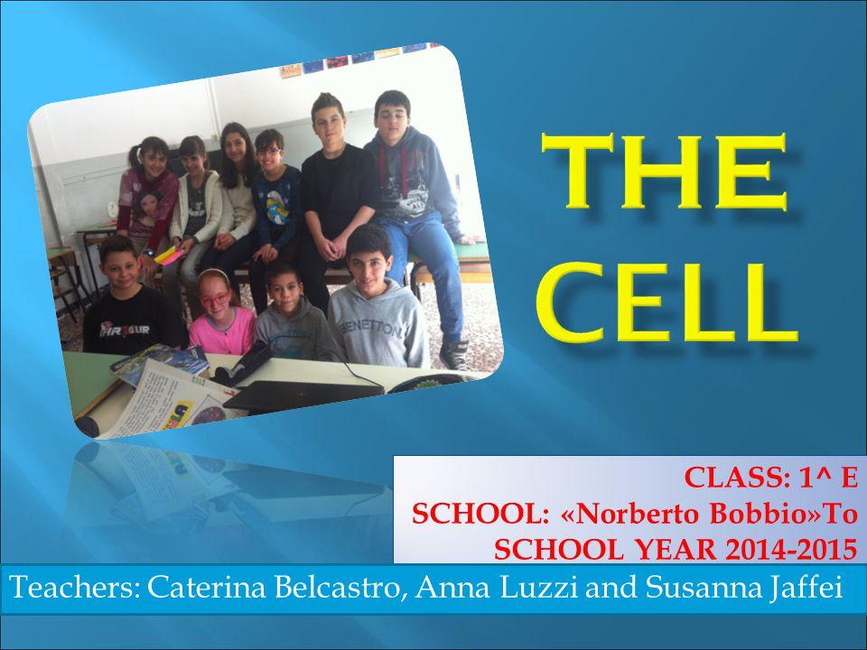 CLASS: 1^ E SCHOOL: «Norberto Bobbio»To SCHOOL YEAR 2014-2015 Teachers: Caterina Belcastro, Anna Luzzi and Susanna Jaffei