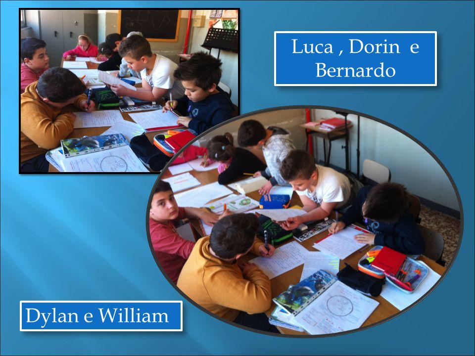 Dylan e William Luca, Dorin e Bernardo