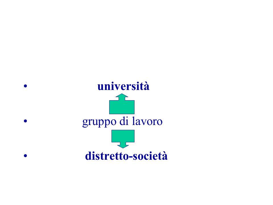 università gruppo di lavoro distretto-società