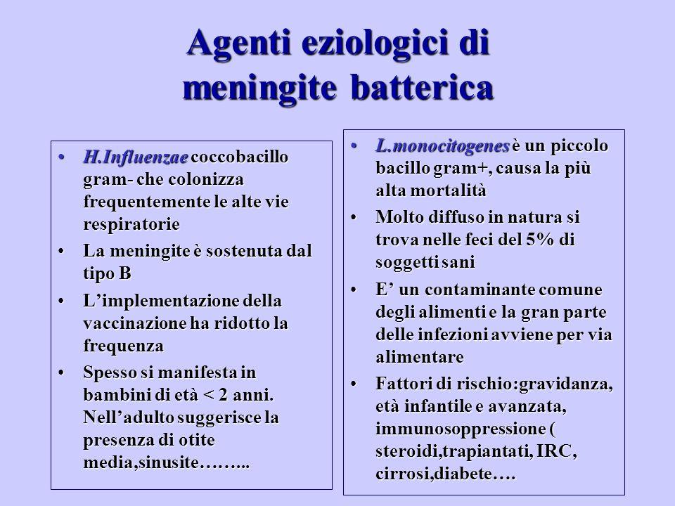 H.Influenzae coccobacillo gram- che colonizza frequentemente le alte vie respiratorieH.Influenzae coccobacillo gram- che colonizza frequentemente le a
