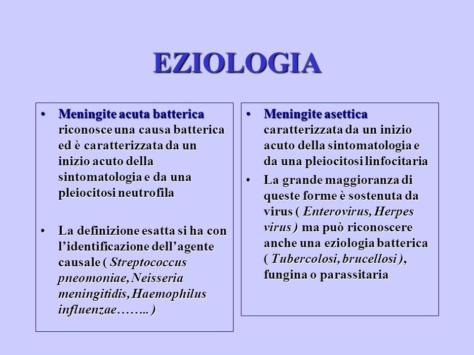 Meningite acuta batterica riconosce una causa batterica ed è caratterizzata da un inizio acuto della sintomatologia e da una pleiocitosi neutrofilaMen