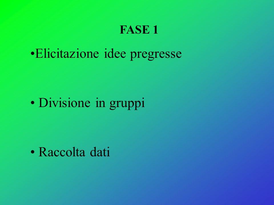 FASE 1 Elicitazione idee pregresse Divisione in gruppi Raccolta dati