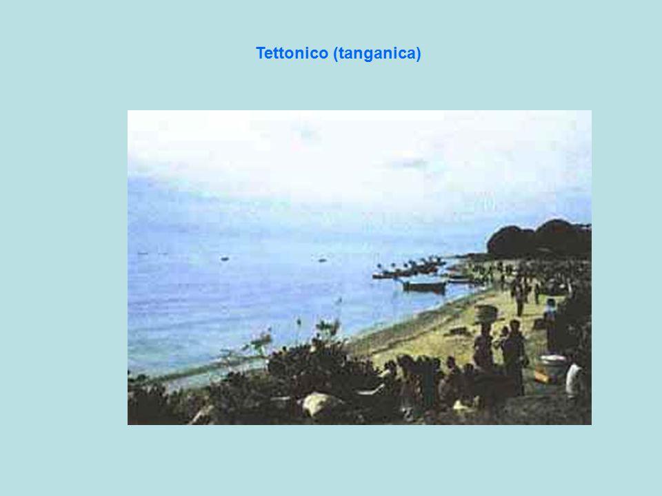 Tettonico (tanganica)