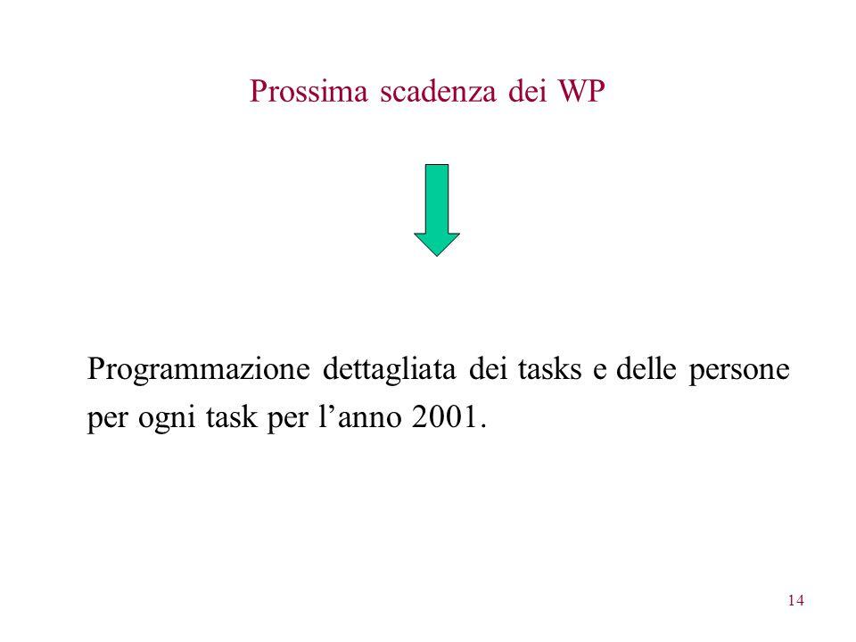 14 Prossima scadenza dei WP Programmazione dettagliata dei tasks e delle persone per ogni task per l'anno 2001.