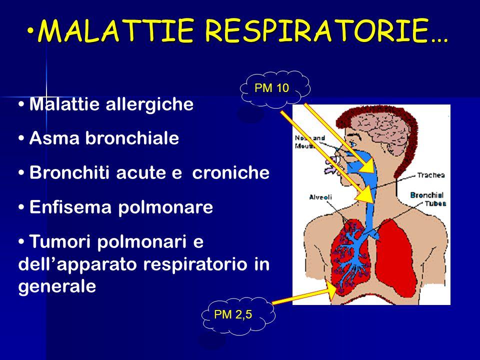 MALATTIE RESPIRATORIE…MALATTIE RESPIRATORIE… Malattie allergiche Asma bronchiale Bronchiti acute e croniche Enfisema polmonare Tumori polmonari e dell'apparato respiratorio in generale PM 10 PM 2,5