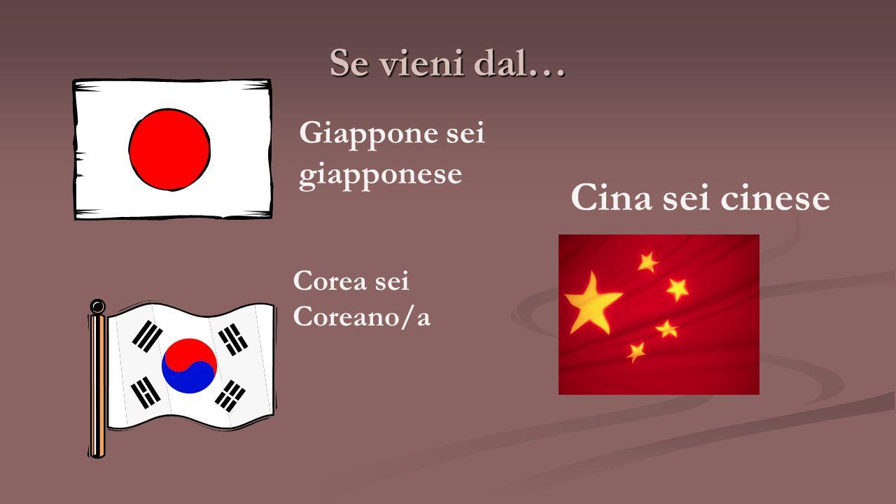 Se vieni dal… Giappone sei giapponese Cina sei cinese Corea sei Coreano/a