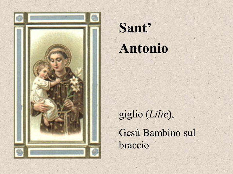 Francesco d'Assisi San uccelli (Vögel), lupo