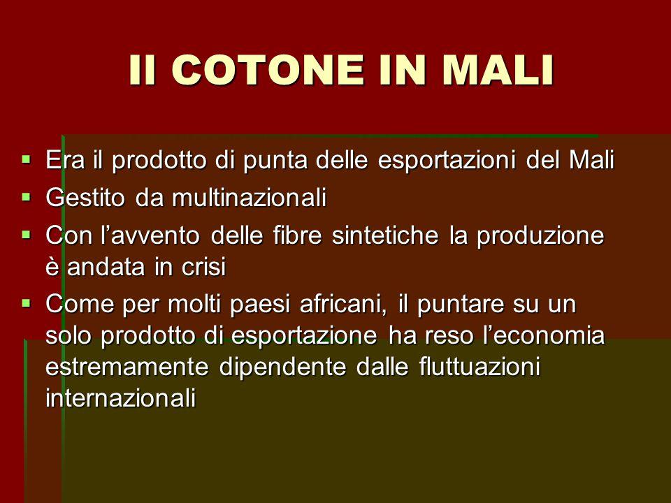  Era il prodotto di punta delle esportazioni del Mali  Gestito da multinazionali  Con l'avvento delle fibre sintetiche la produzione è andata in cr