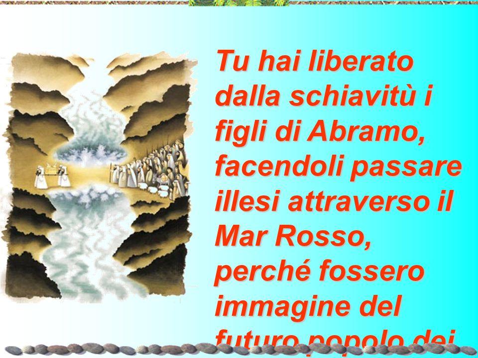 Tu hai liberato dalla schiavitù i figli di Abramo, facendoli passare illesi attraverso il Mar Rosso, perché fossero immagine del futuro popolo dei bat