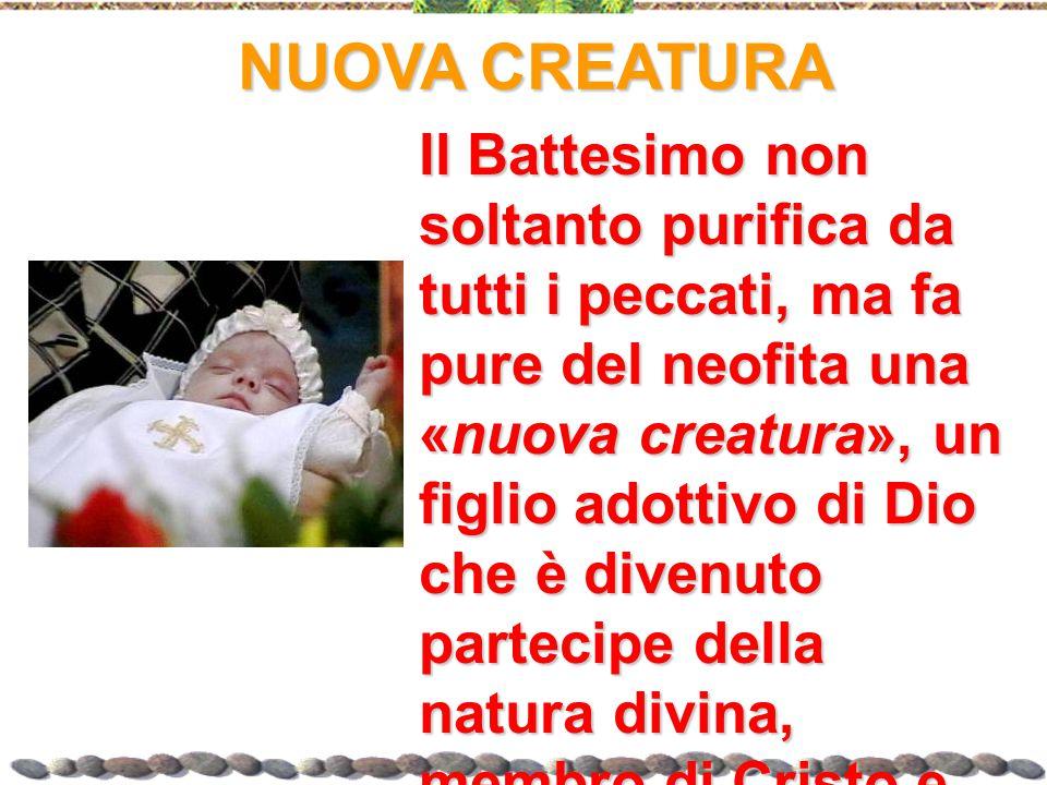 NUOVA CREATURA Il Battesimo non soltanto purifica da tutti i peccati, ma fa pure del neofita una «nuova creatura», un figlio adottivo di Dio che è div