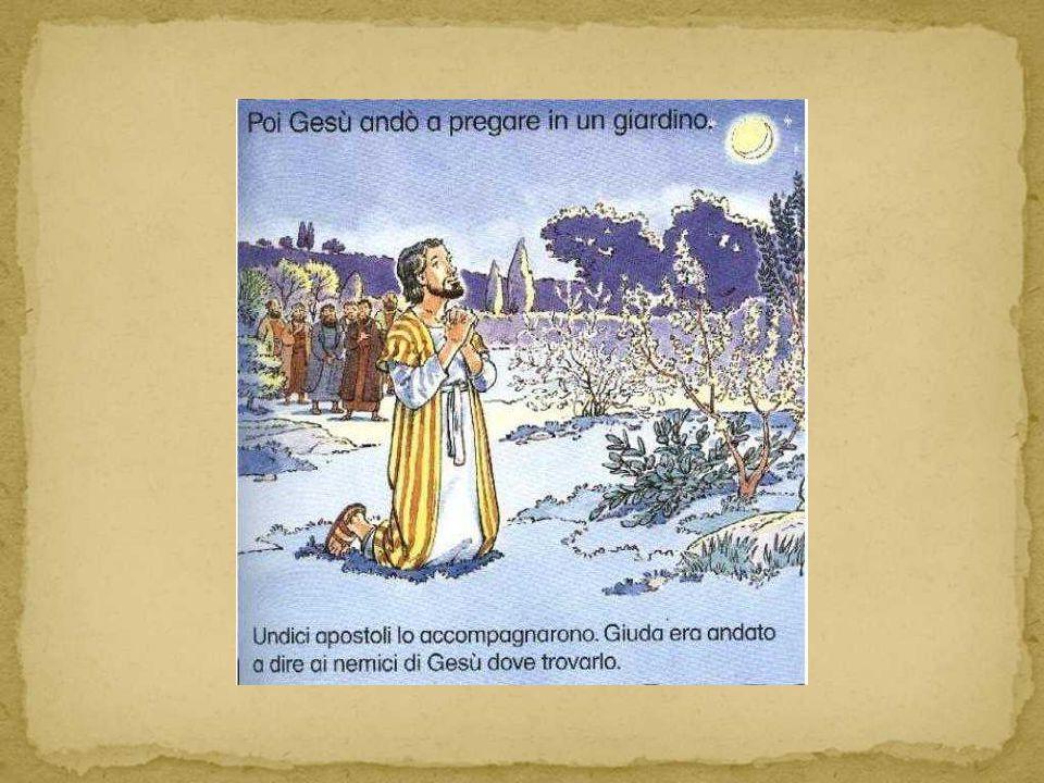Più tardi,quella sera, Gesù andò con i discepoli, all orto di Getsemani.
