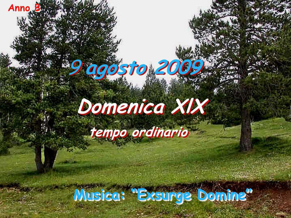 9 agosto 2009 Domenica XlX tempo ordinario Domenica XlX tempo ordinario Anno B Musica: Exsurge Domine