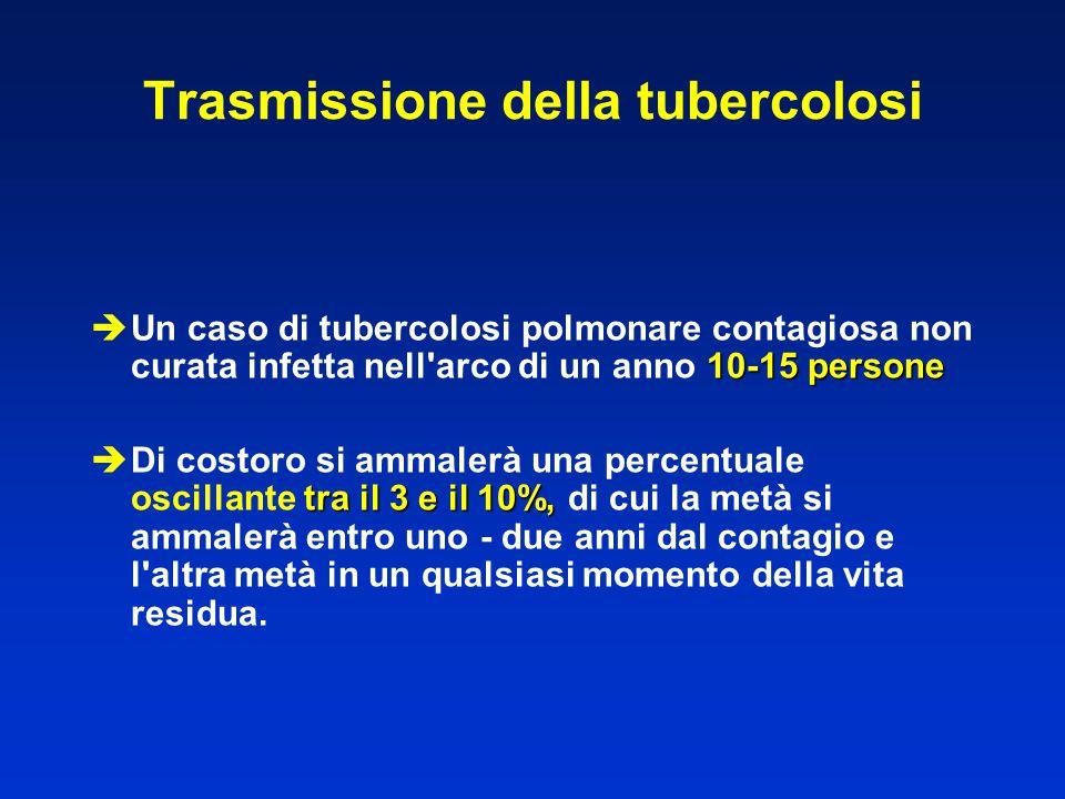 10-15 persone  Un caso di tubercolosi polmonare contagiosa non curata infetta nell'arco di un anno 10-15 persone tra il 3 e il 10%,  Di costoro si a