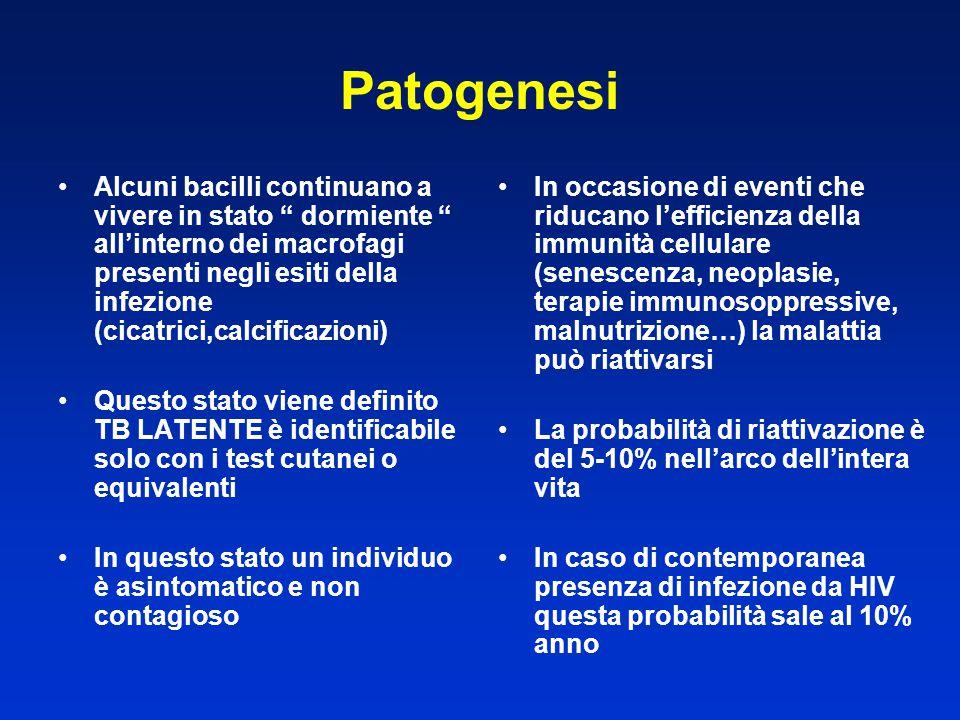 """Alcuni bacilli continuano a vivere in stato """" dormiente """" all'interno dei macrofagi presenti negli esiti della infezione (cicatrici,calcificazioni) Qu"""