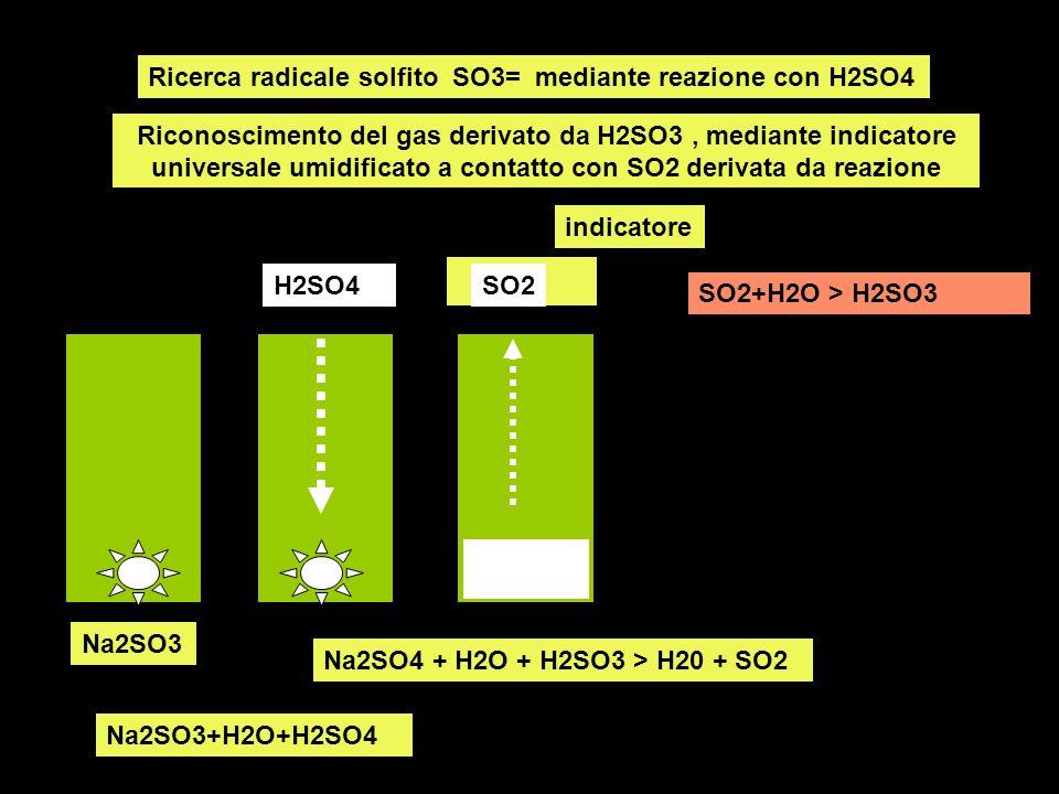 Ricerca radicale solfito SO3= mediante reazione con H2SO4 Riconoscimento del gas derivato da H2SO3, mediante indicatore universale umidificato a conta