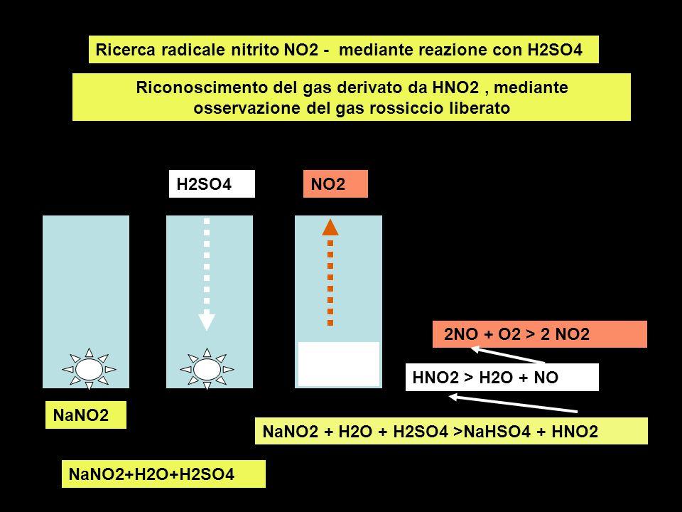 Ricerca radicale nitrito NO2 - mediante reazione con H2SO4 Riconoscimento del gas derivato da HNO2, mediante osservazione del gas rossiccio liberato H2SO4NO2 NaNO2 NaNO2+H2O+H2SO4 NaNO2 + H2O + H2SO4 >NaHSO4 + HNO2 HNO2 > H2O + NO 2NO + O2 > 2 NO2