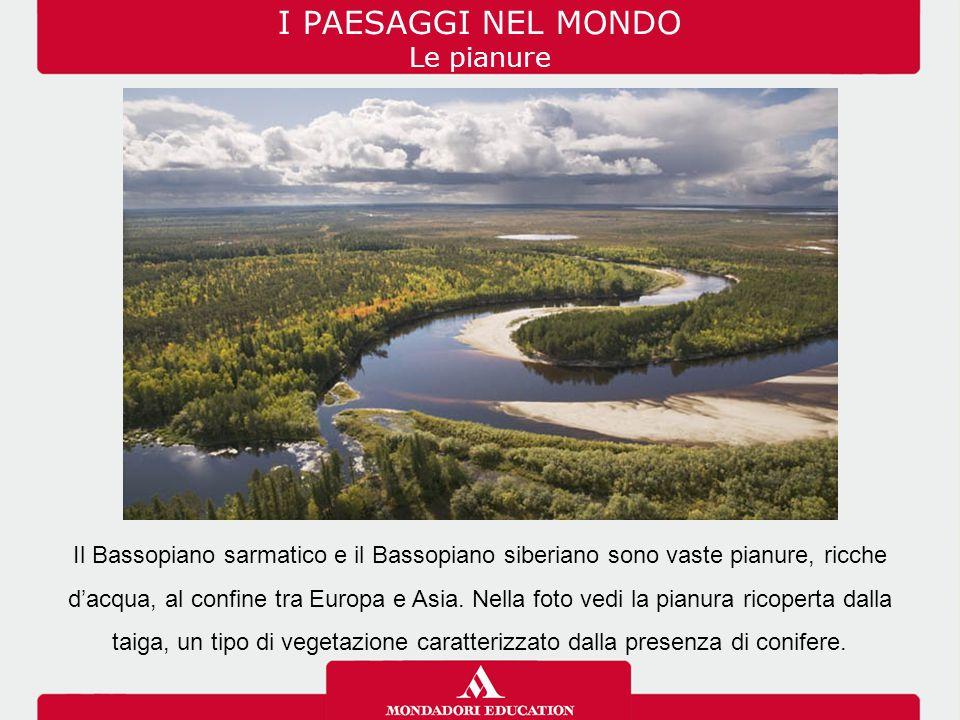 I PAESAGGI NEL MONDO Le pianure Il Bassopiano sarmatico e il Bassopiano siberiano sono vaste pianure, ricche d'acqua, al confine tra Europa e Asia. Ne