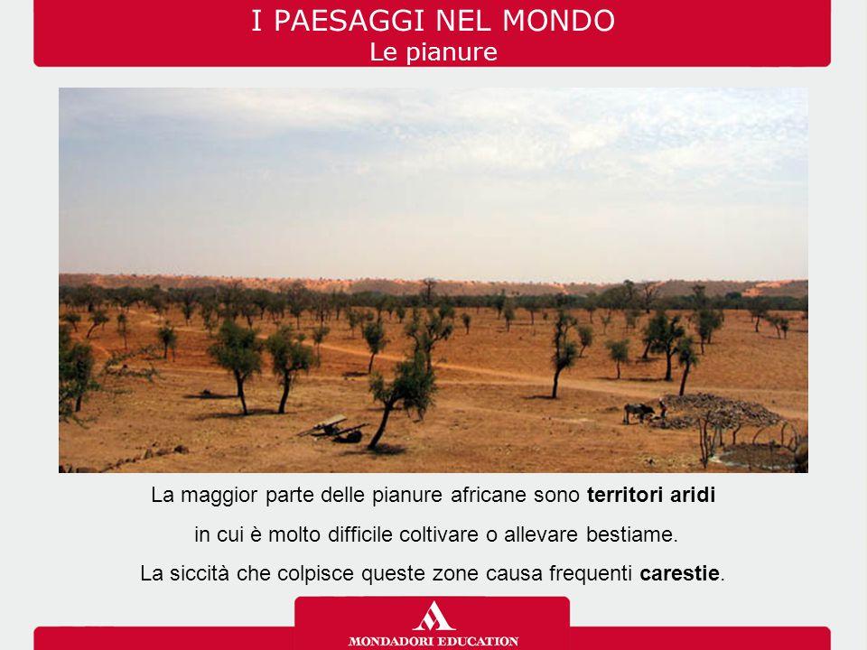 I PAESAGGI NEL MONDO Le pianure La maggior parte delle pianure africane sono territori aridi in cui è molto difficile coltivare o allevare bestiame. L