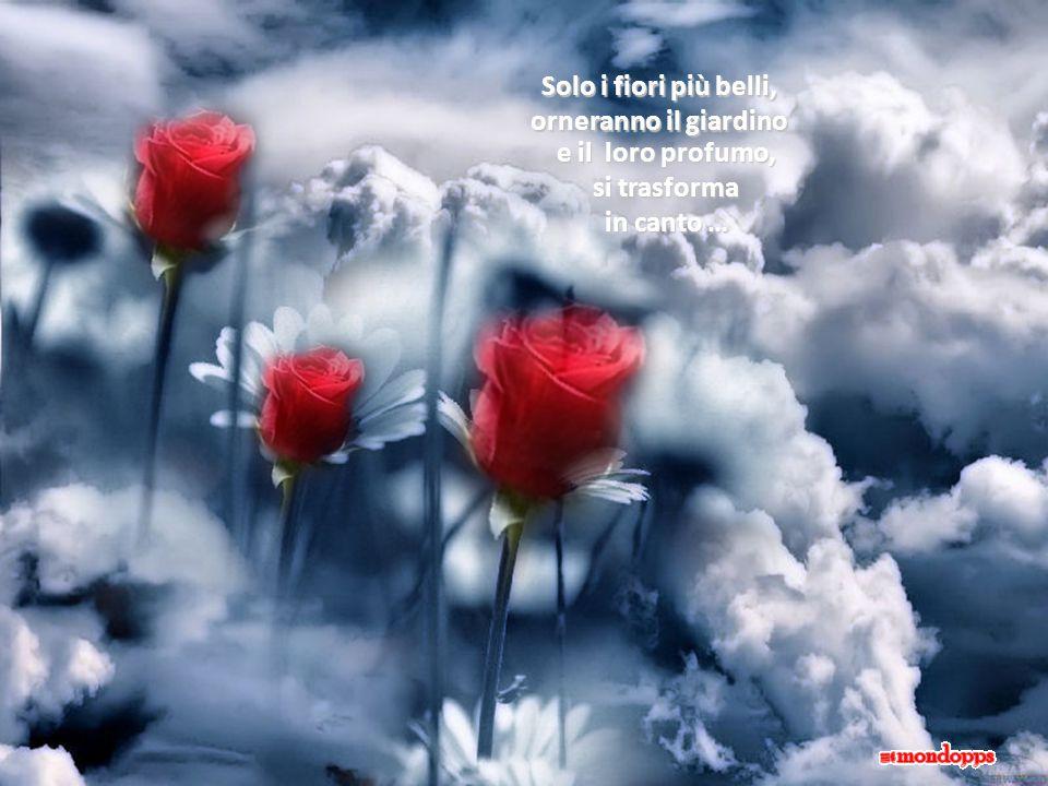 Solo per Amore un angelo canta la sua poesia più dolce!