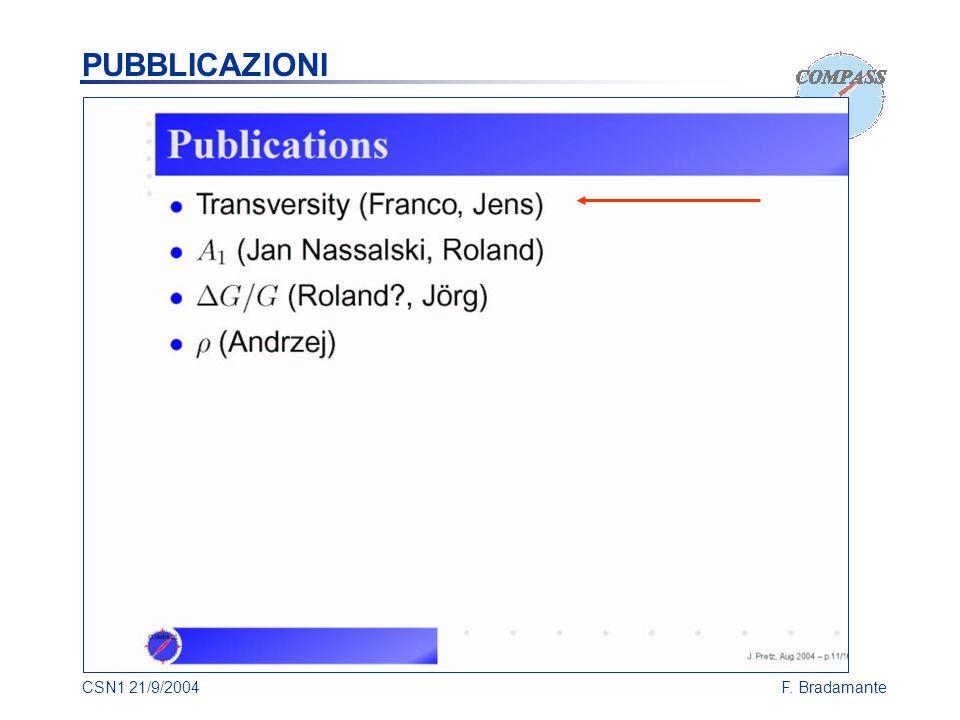 CSN1 21/9/2004F. Bradamante PUBBLICAZIONI